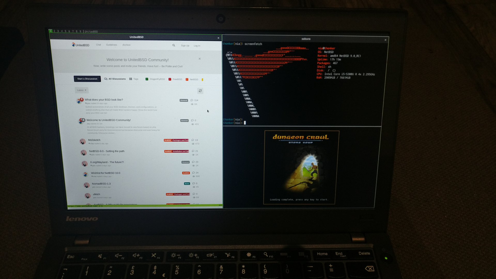 A Wayland compositor running on my NetBSD laptop, with a few applications like Luakit and Dungeon Crawl Stone Soup open.